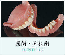 義歯・入れ歯